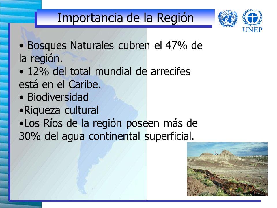 Bosques Naturales cubren el 47% de la región.12% del total mundial de arrecifes está en el Caribe.