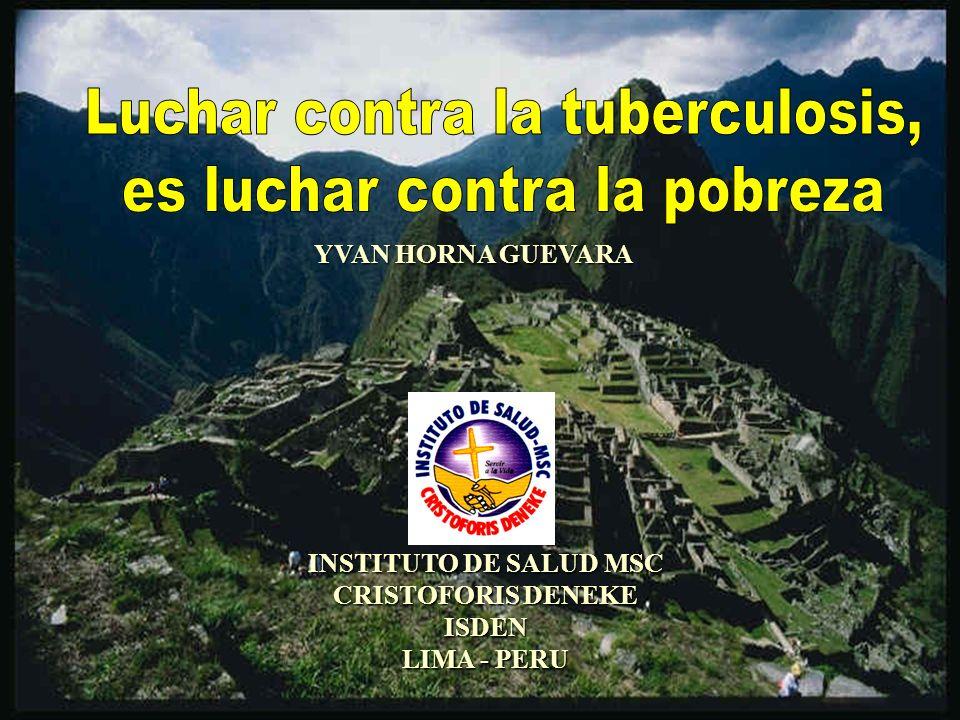 INSTITUTO DE SALUD MSC CRISTOFORIS DENEKE ISDEN LIMA - PERU YVAN HORNA GUEVARA