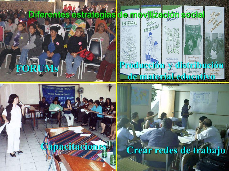Diferentes estrategias de movilización social Producción y distribución de material educativo FORUMs Capacitaciones Crear redes de trabajo