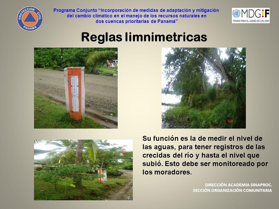 Reglas limnimetricas Su función es la de medir el nivel de las aguas, para tener registros de las crecidas del río y hasta el nivel que subió. Esto de