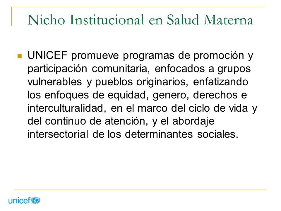 Nicho Institucional en Salud Materna UNICEF promueve programas de promoción y participación comunitaria, enfocados a grupos vulnerables y pueblos orig
