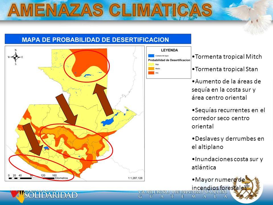 Tormenta tropical Mitch Tormenta tropical Stan Aumento de la áreas de sequía en la costa sur y área centro oriental Sequías recurrentes en el corredor