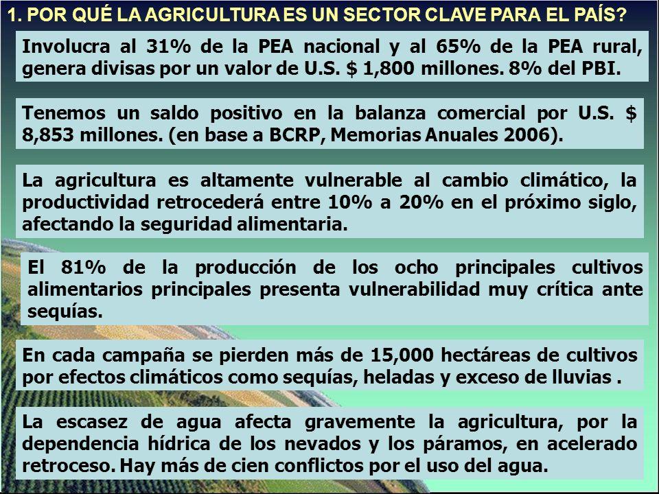 1. POR QUÉ LA AGRICULTURA ES UN SECTOR CLAVE PARA EL PAÍS.