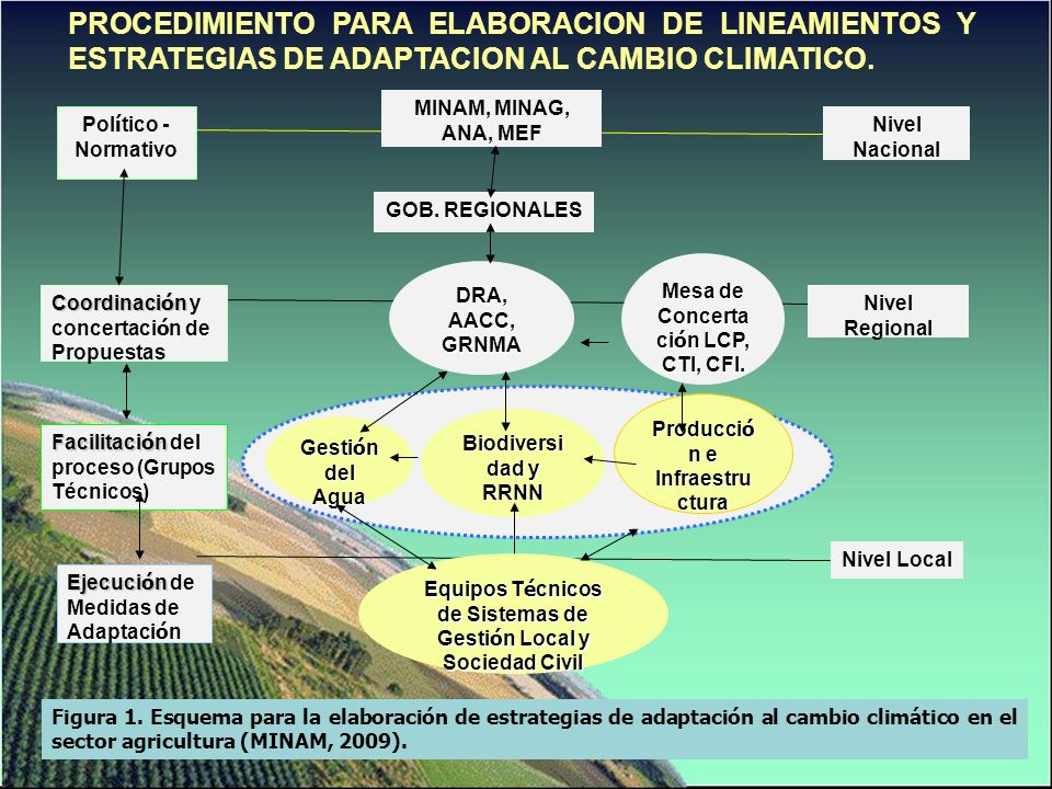 Esquema 1. Ejemplo de medidas generales de adaptación relacionadas con la Agricultura en el Perú.
