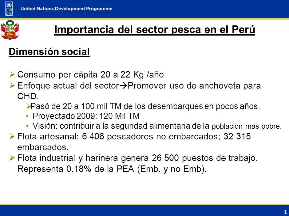 1 Importancia del sector pesca en el Perú Dimensión social Consumo per cápita 20 a 22 Kg /año Enfoque actual del sector Promover uso de anchoveta para CHD.