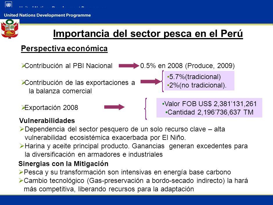 2 Importancia del sector pesca en el Perú Perspectiva económica Contribución al PBI Nacional 0.5% en 2008 (Produce, 2009) Contribución de las exportaciones a la balanza comercial Exportación 2008 5.7%(tradicional) 2%(no tradicional).