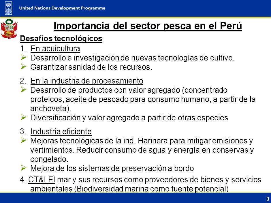2 Importancia del sector pesca en el Perú Perspectiva económica Contribución al PBI Nacional 0.5% en 2008 (Produce, 2009) Contribución de las exportac