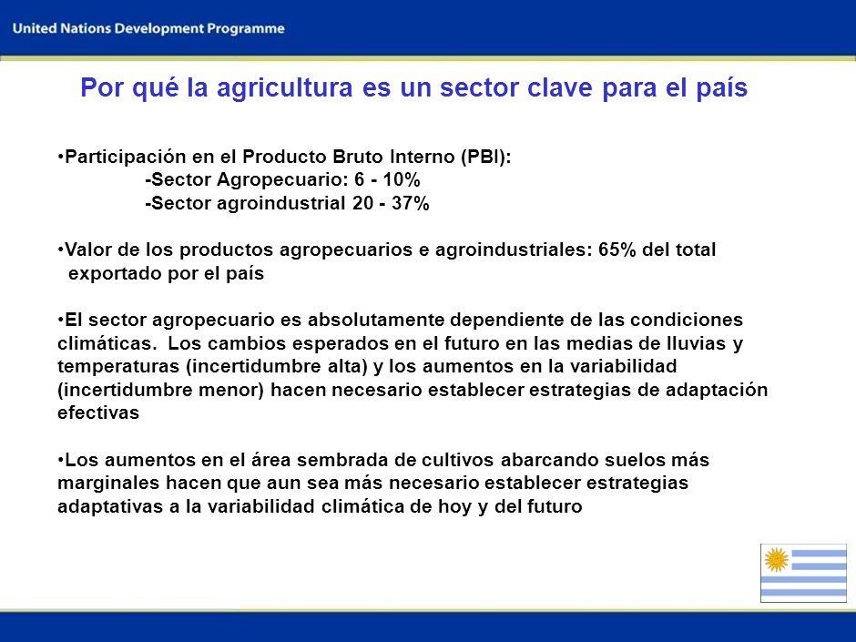0 DIÁLOGO INTERMINISTERIAL SOBRE EL CAMBIO CLIMÁTICO Montevideo, Uruguay Julio 2009 Informe Nacional: Uruguay Sector: Agricultura Enfoque: Adaptación