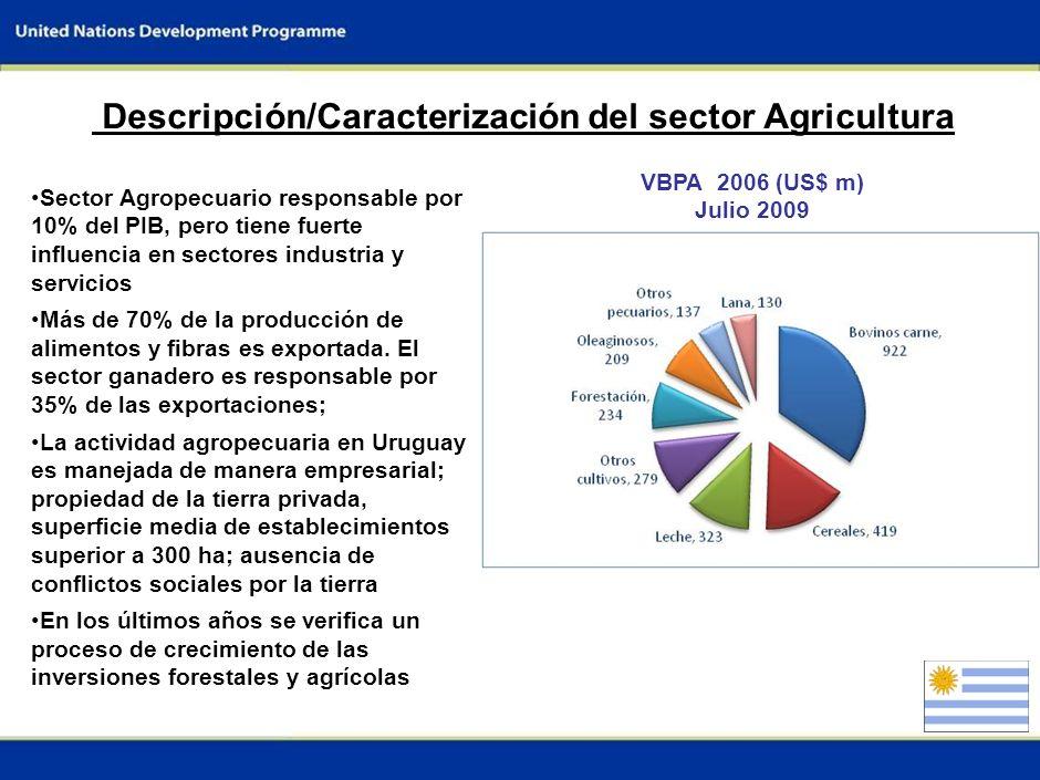 1 Por qué la agricultura es un sector clave para el país Participación en el Producto Bruto Interno (PBI): -Sector Agropecuario: 6 - 10% -Sector agroindustrial 20 - 37% Valor de los productos agropecuarios e agroindustriales: 65% del total exportado por el país El sector agropecuario es absolutamente dependiente de las condiciones climáticas.