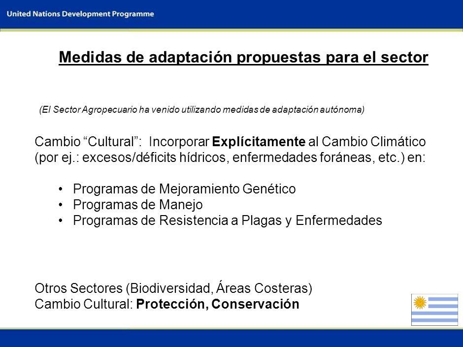 3 Vulnerabilidades del sector La variabilidad climática interanual del Uruguay es de las más altas del mundo. La producción pecuaria ocupa más del 80%