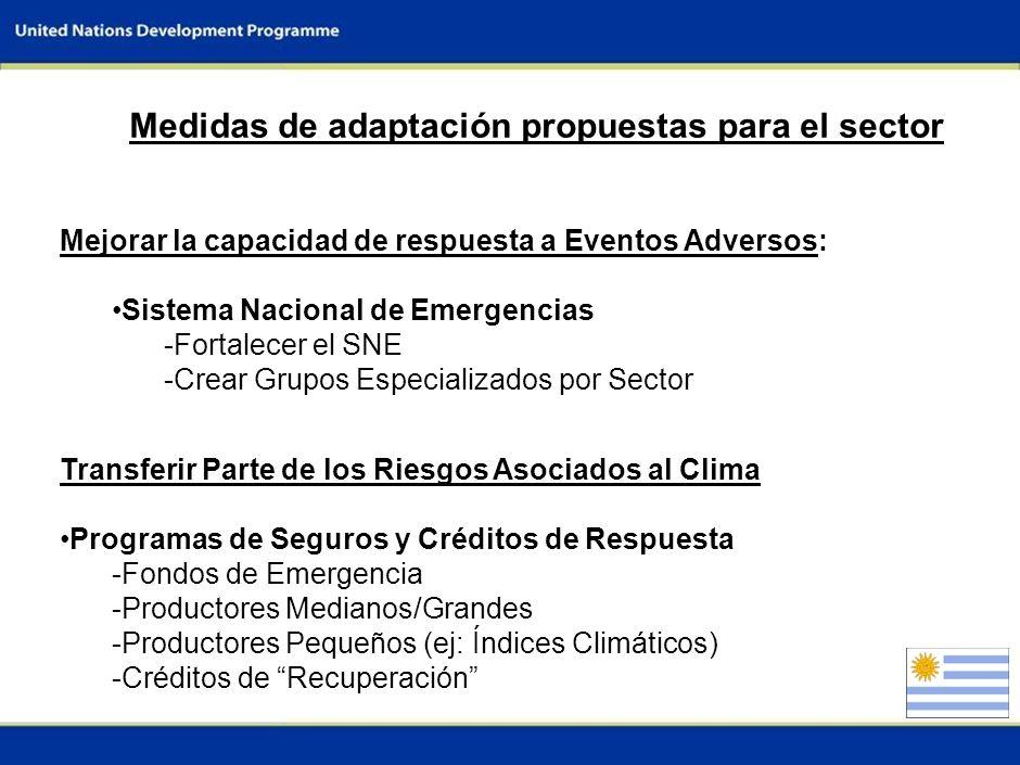 6 Generación y Acceso a Información Información Climática: -Mejorar Observaciones (estaciones y Sensoram. Remoto) -Mejorar el acceso (ejemplo INIA GRA