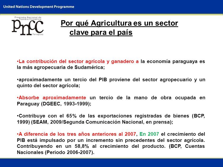 0 DIÁLOGO INTERMINISTERIAL SOBRE EL CAMBIO CLIMÁTICO Asunción, Paraguay 14 de abril de 2009 Informe Nacional: Paraguay Sector: Agricultura Enfoque: Adaptación Responsable: Ing.