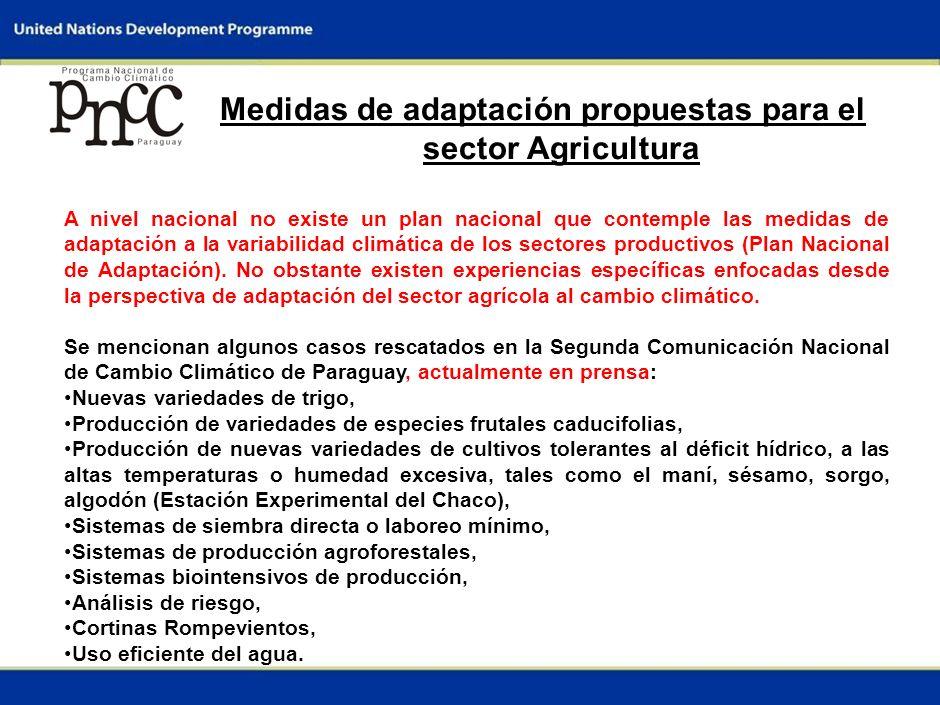 3 Descripción del sector Agricultura Los principales rubros de renta del Paraguay son: El algodón: representa un rubro social importante como fuente de ingreso y mano de obra, Sup.