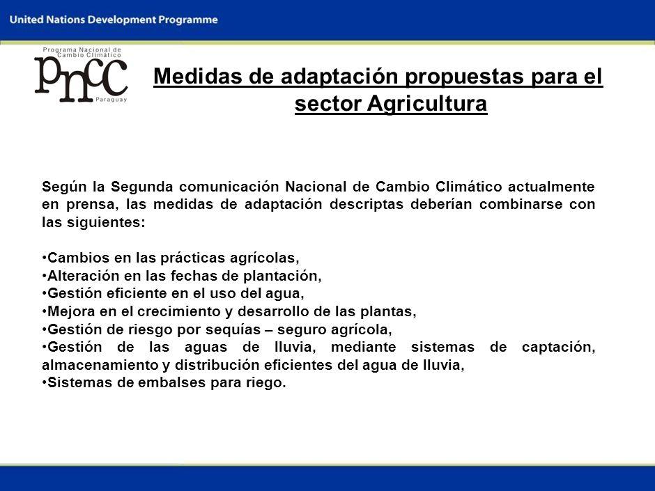4 Medidas de adaptación propuestas para el sector Agricultura A nivel nacional no existe un plan nacional que contemple las medidas de adaptación a la variabilidad climática de los sectores productivos (Plan Nacional de Adaptación).