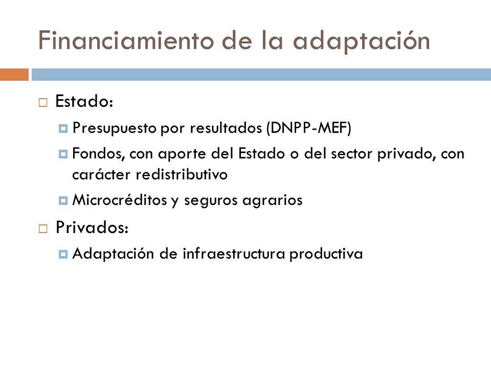Financiamiento de la adaptación Estado: Presupuesto por resultados (DNPP-MEF) Fondos, con aporte del Estado o del sector privado, con carácter redistr