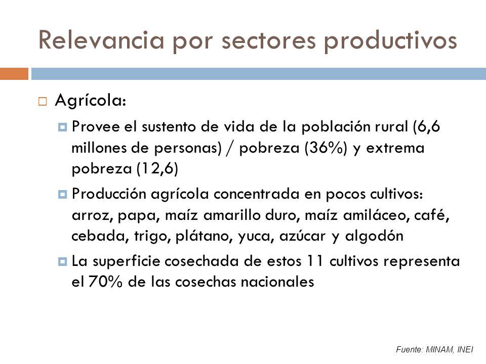 Relevancia por sectores productivos Agrícola: Provee el sustento de vida de la población rural (6,6 millones de personas) / pobreza (36%) y extrema po