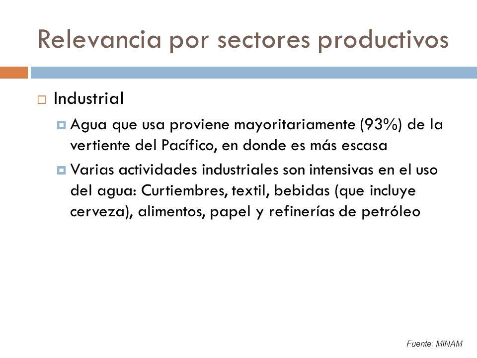 Relevancia por sectores productivos Energía eléctrica: 161 centrales hidroeléctricas (38% del total de centrales) Potencia instalada: Generación hidroeléctrica es 46% del total de la potencia instalada (7.059 MW) Potencia efectiva: 93% de la instalada Producción hidroeléctrica: 19,502 GW.h es el 65% del total producido (29.857 GW.h) Potencial hidroeléctrico: 58.000 MW Fuente: MINAM, MEM