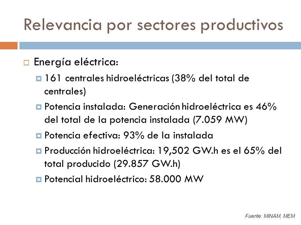 Relevancia por sectores productivos Energía eléctrica: 161 centrales hidroeléctricas (38% del total de centrales) Potencia instalada: Generación hidro