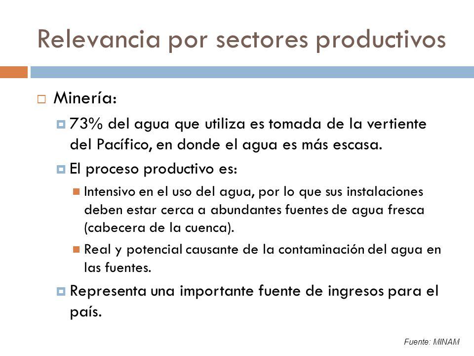 Relevancia por sectores productivos Consumo humano: Las cifras oficiales no reflejan la magnitud del problema en la zona rural y urbana Pese a ello, la brecha en cobertura del servicio aún es amplia: El 68% de las viviendas tiene abastecimiento de agua potable dentro de la vivienda Las aguas negras son la principal fuente de contaminación de las fuentes de agua El desperdicio del agua potable es alto: 45% del agua potable se pierde en la red en Lima 350 lt/hab/día promedio de consumo en Lima Fuente: MINAM, INEI, SEDAPAL