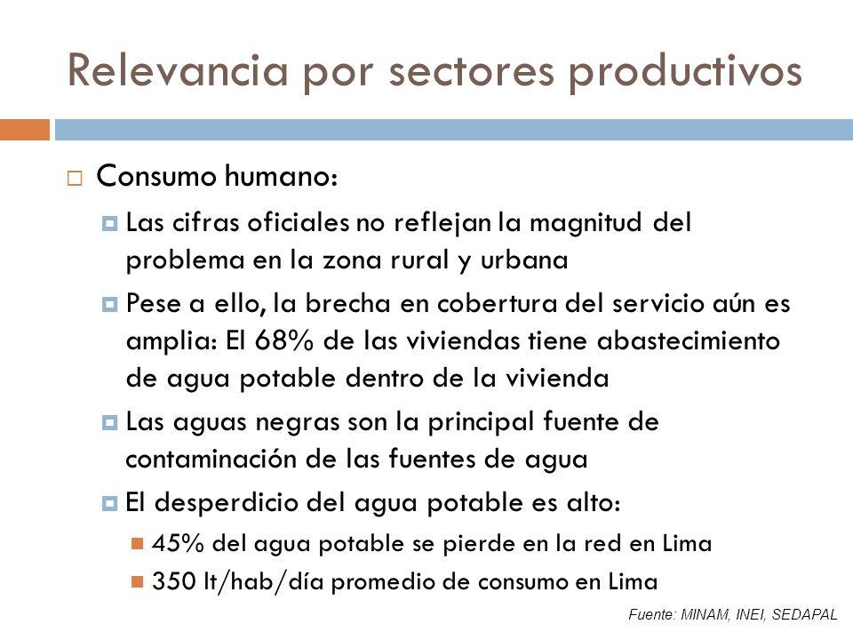 Relevancia por sectores productivos Consumo humano: Las cifras oficiales no reflejan la magnitud del problema en la zona rural y urbana Pese a ello, l