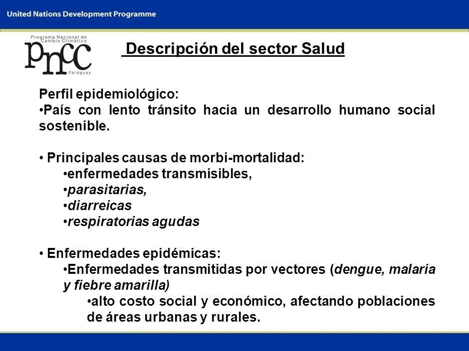 3 Descripción del sector Salud Perfil epidemiológico: País con lento tránsito hacia un desarrollo humano social sostenible.