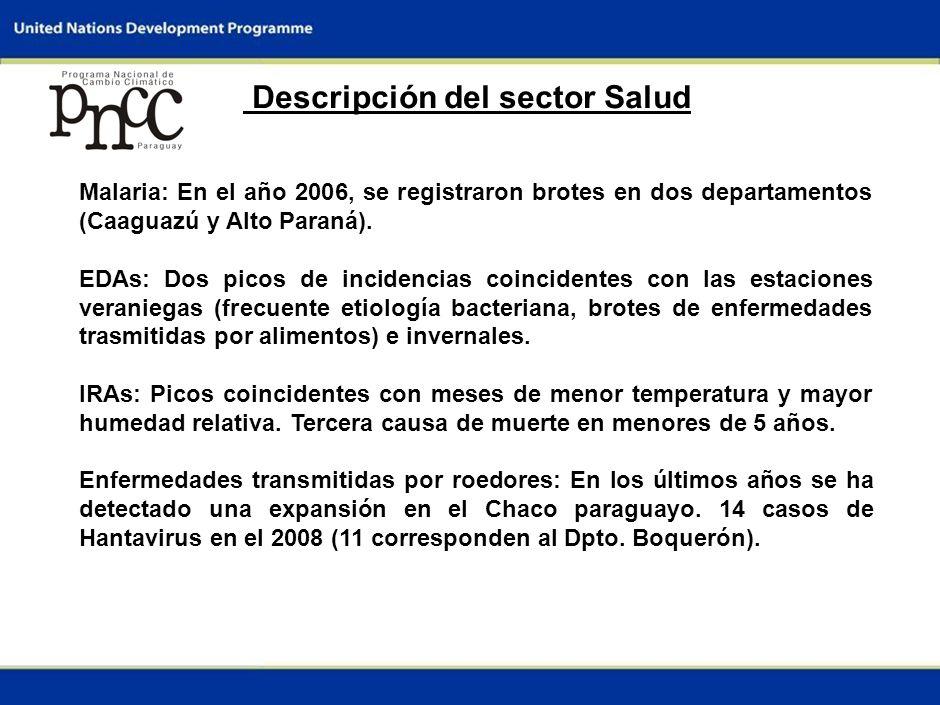 4 Descripción del sector Salud Malaria: En el año 2006, se registraron brotes en dos departamentos (Caaguazú y Alto Paraná).