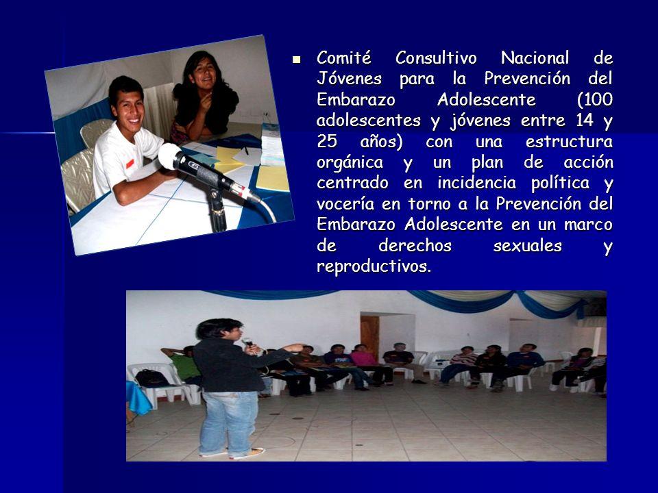 Comité Consultivo Nacional de Jóvenes para la Prevención del Embarazo Adolescente (100 adolescentes y jóvenes entre 14 y 25 años) con una estructura o