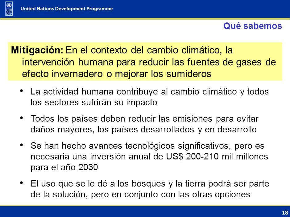 17 PLAN DE ACCIÓN DE BALI PILAR FUNDAMENTAL MITIGACIÓN Hernan Carlino, Argentina