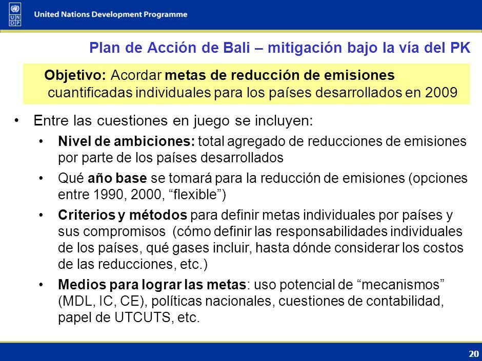 19 Las instrumentos de política incluyen: Regulaciones: estándares de eficiencia en motores y vehículos, combustibles Incentivos: impositivos y fiscal