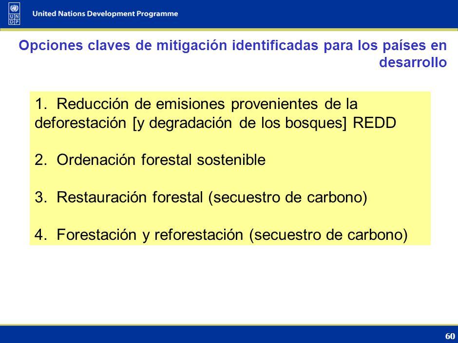 59 Sector clave para los países desarrollados por su potencial de mitigación Contencioso por las grandes incertidumbres Los países en desarrollo se centran fundamentalmente en los inventarios de GEI (datos, fuentes, capacidades) Principal paso en Marrakesh (2001) en el marco del Protocolo de Kyoto: Forestación y reforestación incluida en el MDL La reducción de las emisiones debidas a la deforestación y la degradación de los bosques (REDD) se vuelve un tema de la Convención Evolución de las negociaciones internacionales