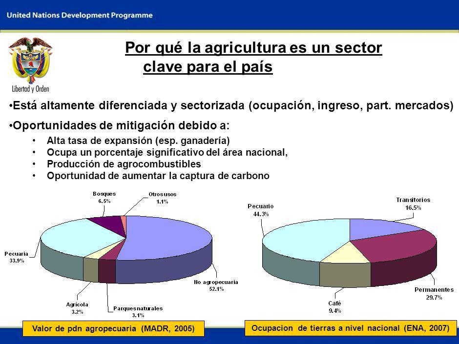 2 Por qué la agricultura es un sector clave para el país Está altamente diferenciada y sectorizada (ocupación, ingreso, part.