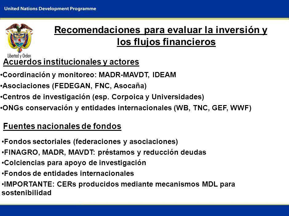 7 Recomendaciones para evaluar la inversión y los flujos financieros Acuerdos institucionales y actores Fuentes nacionales de fondos Coordinación y monitoreo: MADR-MAVDT, IDEAM Asociaciones (FEDEGAN, FNC, Asocaña) Centros de investigación (esp.