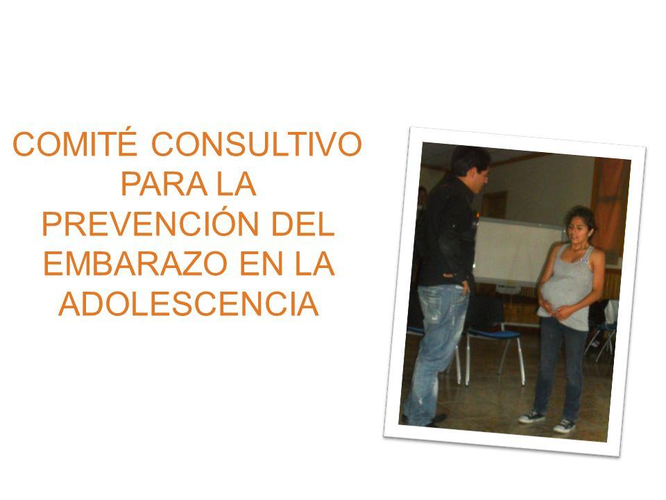 Plan Andino para la Prevención del Embarazo en Adolescentes Ministros/as de Salud emiten la Resolución REMSAA XXVII/000 (Marzo de 2007 en Santa Cruz – Bolivia) Embarazo no planificado como un problema de SALUD PÚBLICA.