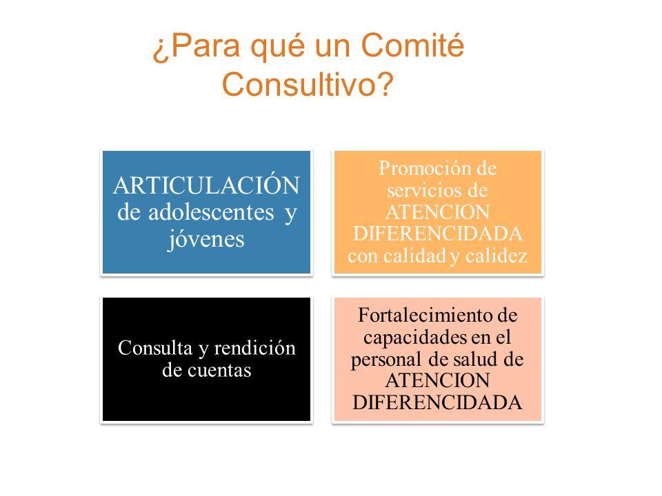 Acciones realizadas Conformación de Planes de Trabajo Marco Internacional (Santiago de Chile, 2010) Plan Regional (Cochabamba, 2010) Planes Departamentales (2011)