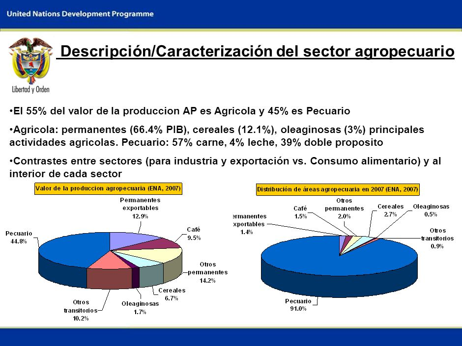 2 Descripción/Caracterización del sector agropecuario El 55% del valor de la produccion AP es Agricola y 45% es Pecuario Agricola: permanentes (66.4% PIB), cereales (12.1%), oleaginosas (3%) principales actividades agricolas.