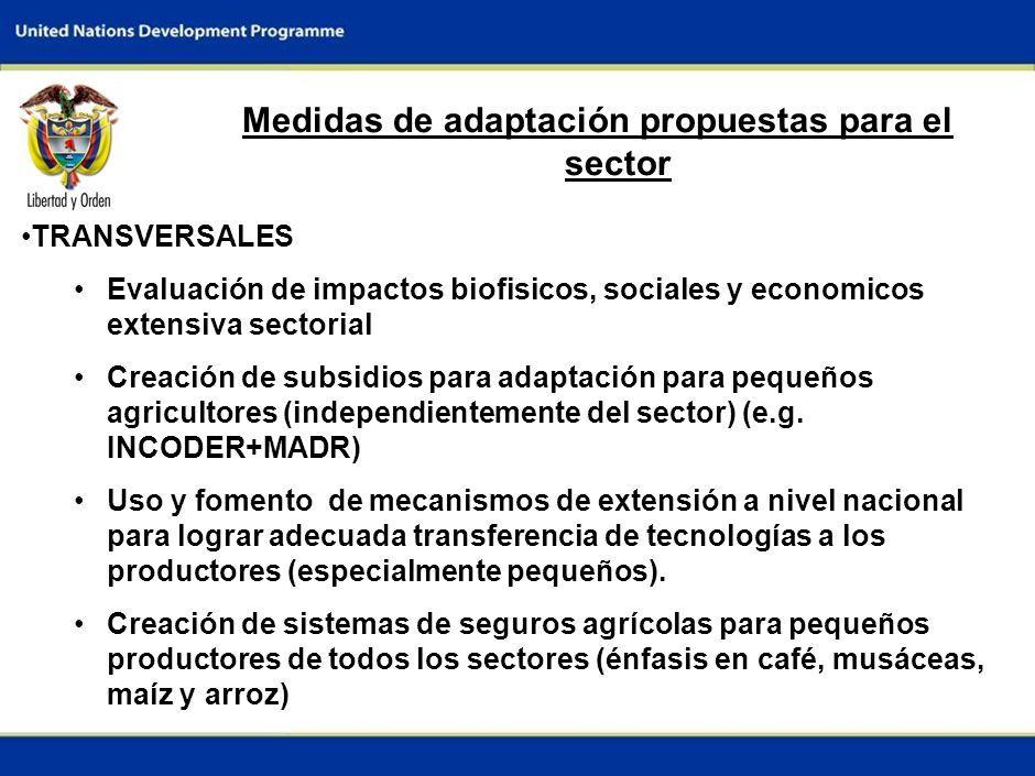 5 Medidas de adaptación propuestas para el sector TRANSVERSALES Evaluación de impactos biofisicos, sociales y economicos extensiva sectorial Creación de subsidios para adaptación para pequeños agricultores (independientemente del sector) (e.g.