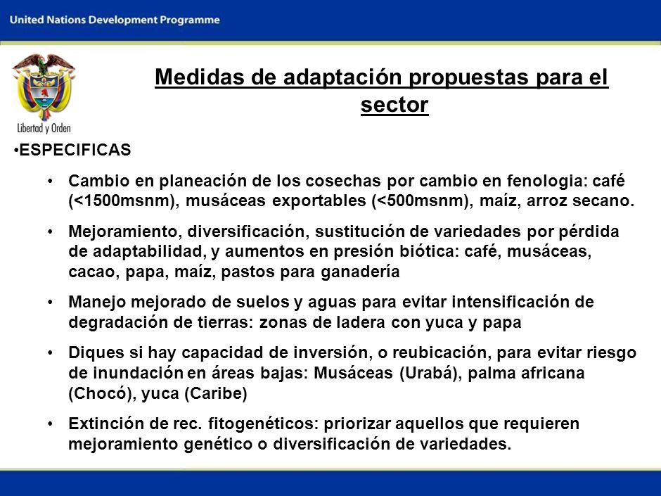 6 Medidas de adaptación propuestas para el sector ESPECIFICAS Cambio en planeación de los cosechas por cambio en fenologia: café (<1500msnm), musáceas exportables (<500msnm), maíz, arroz secano.