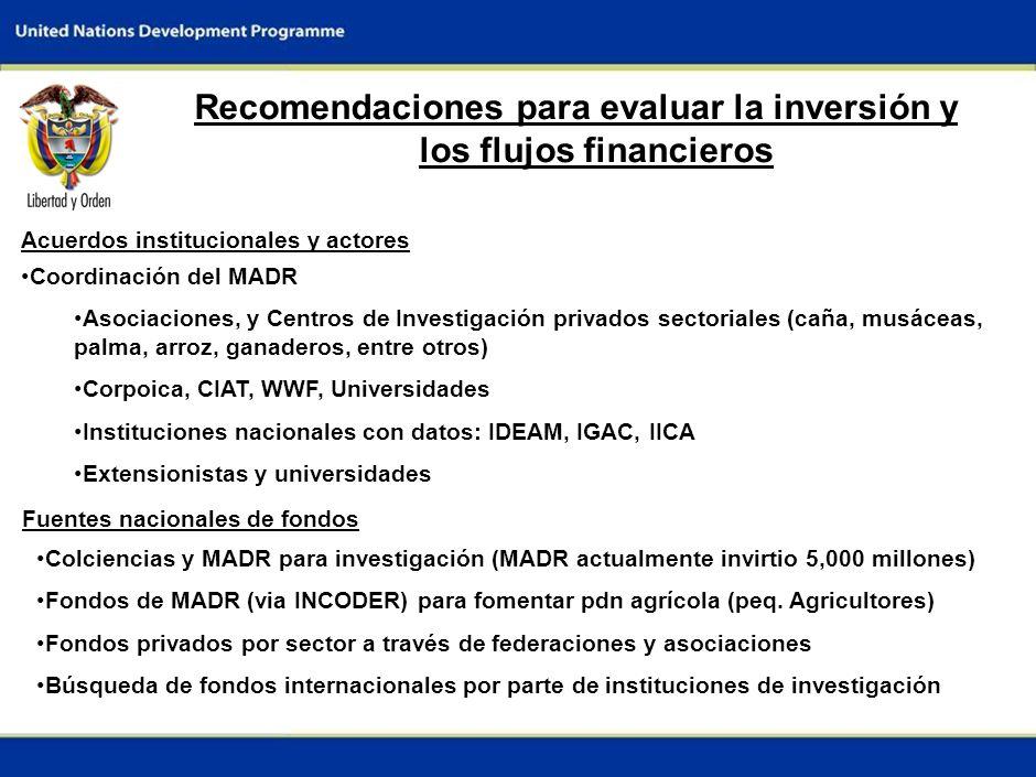 8 Recomendaciones para evaluar la inversión y los flujos financieros Acuerdos institucionales y actores Coordinación del MADR Asociaciones, y Centros de Investigación privados sectoriales (caña, musáceas, palma, arroz, ganaderos, entre otros) Corpoica, CIAT, WWF, Universidades Instituciones nacionales con datos: IDEAM, IGAC, IICA Extensionistas y universidades Fuentes nacionales de fondos Colciencias y MADR para investigación (MADR actualmente invirtio 5,000 millones) Fondos de MADR (via INCODER) para fomentar pdn agrícola (peq.