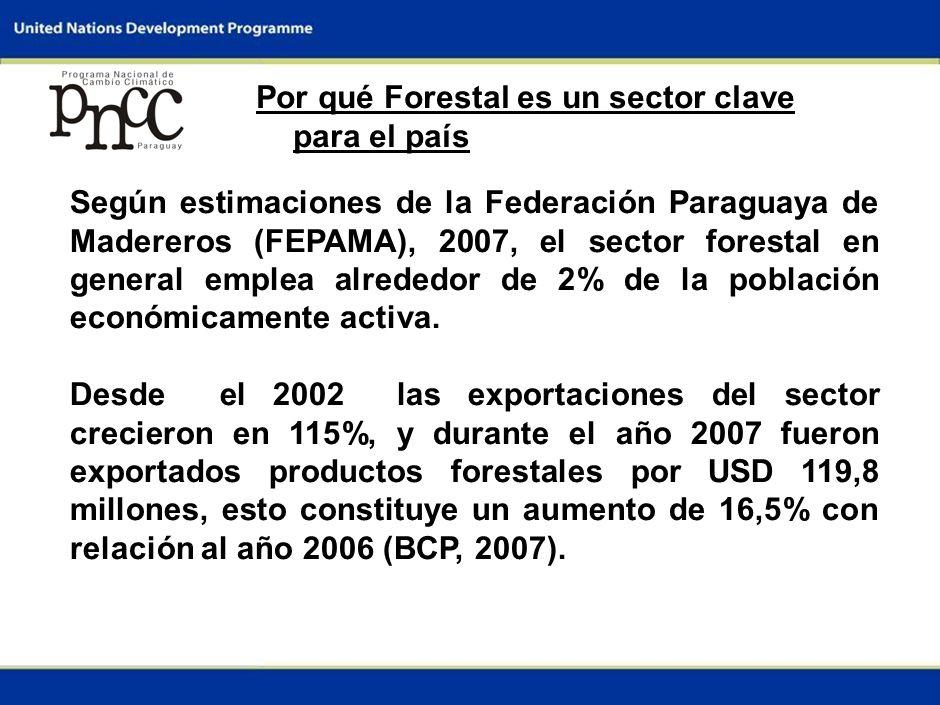 1 Por qué Forestal es un sector clave para el país Según estimaciones de la Federación Paraguaya de Madereros (FEPAMA), 2007, el sector forestal en general emplea alrededor de 2% de la población económicamente activa.