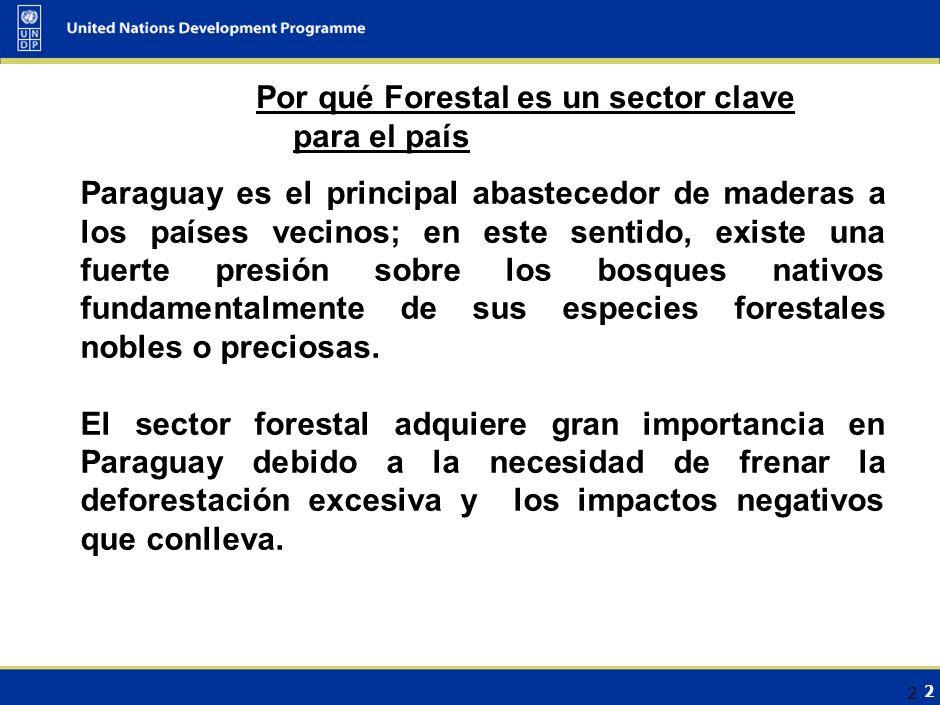 2 2 Paraguay es el principal abastecedor de maderas a los países vecinos; en este sentido, existe una fuerte presión sobre los bosques nativos fundamentalmente de sus especies forestales nobles o preciosas.