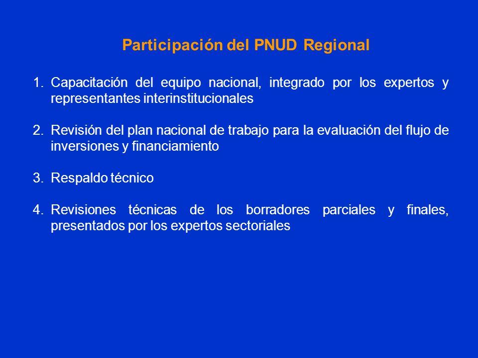 1.Capacitación del equipo nacional, integrado por los expertos y representantes interinstitucionales 2.Revisión del plan nacional de trabajo para la e