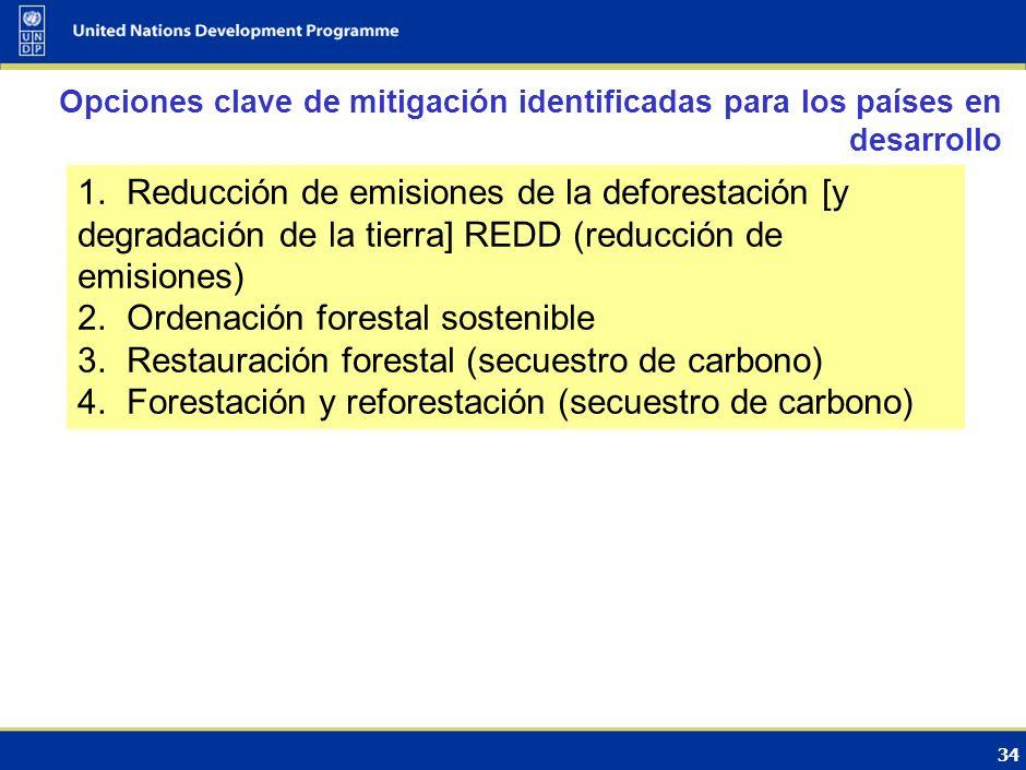 33 Sector clave para los países desarrollados por su potencial de mitigación Contencioso por las grandes incertidumbres Los países en desarrollo se centran fundamentalmente en los inventarios de GEI (cuestiones de datos, fuentes, capacidades) Principal paso en Marrakesh (2001) en el marco del Protocolo de Kyoto: Forestación y reforestación incluida en el MDL La reducción de las emisiones de la deforestación y la degradación de los bosques (REDD) se vuelve un tema de la Convención Evolución de las negociaciones internacionales