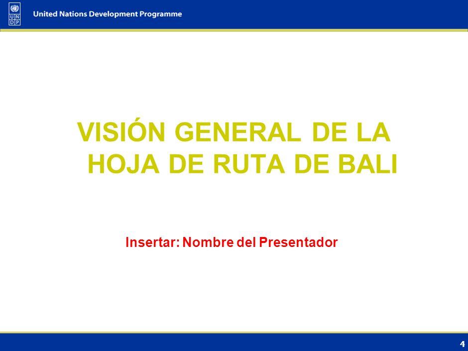 4 VISIÓN GENERAL DE LA HOJA DE RUTA DE BALI Insertar: Nombre del Presentador