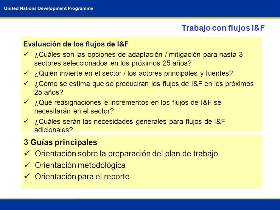 2 Secuencia de las actividades nacionales Preparación previa al taller (2 meses) Participación de los ministerios clave Identificación de sectores cla
