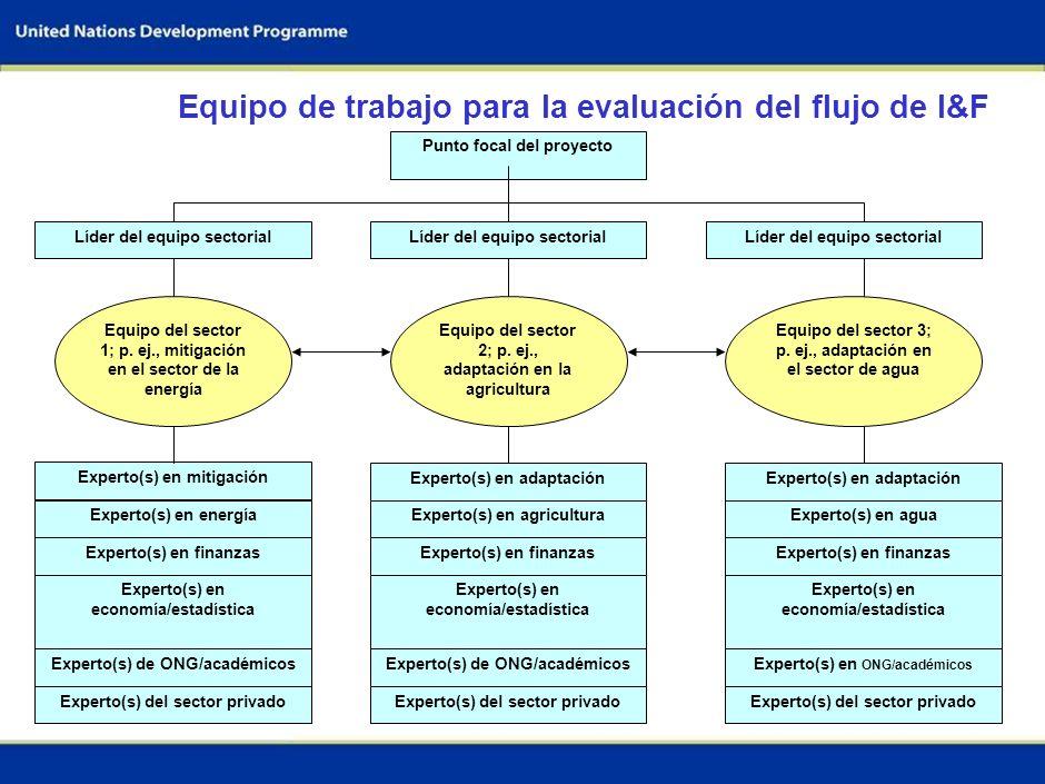 4 Establecer el equipo de trabajo Evaluar las capacidades metodológicas y las necesidades Evaluar la disponibilidad y las necesidades de información L