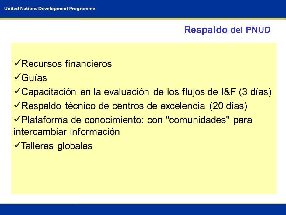5 Equipo de trabajo para la evaluación del flujo de I&F Equipo del sector 1; p.