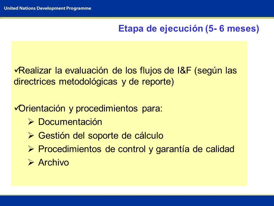 6 Recursos financieros Guías Capacitación en la evaluación de los flujos de I&F (3 días) Respaldo técnico de centros de excelencia (20 días) Plataform