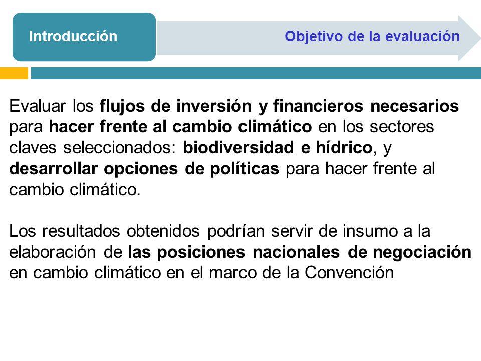 IntroducciónObjetivo de la evaluación Evaluar los flujos de inversión y financieros necesarios para hacer frente al cambio climático en los sectores c