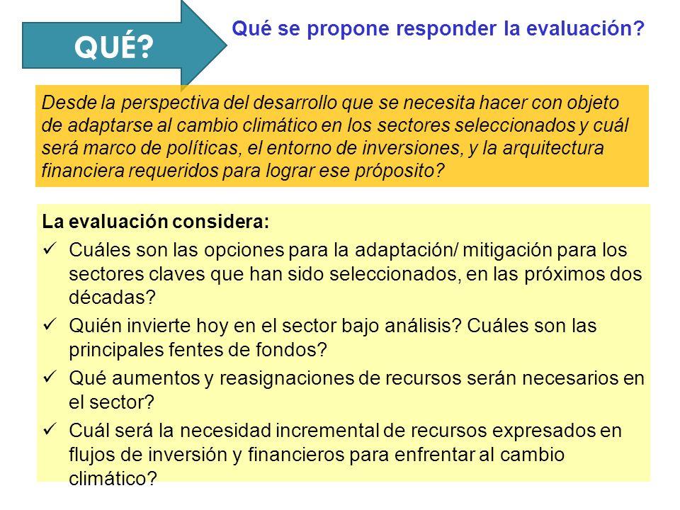 QUÉ ? La evaluación considera: Cuáles son las opciones para la adaptación/ mitigación para los sectores claves que han sido seleccionados, en las próx