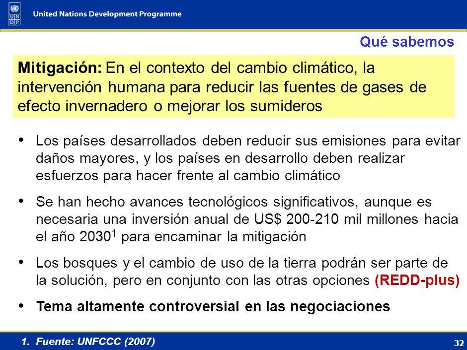 31 MITIGACIÓN Hernan Carlino, Argentina